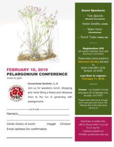 Pelargonium Conference Poster 2019